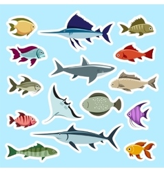 Colorful fish stickers set vector