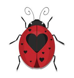 heart ladybug vector image vector image