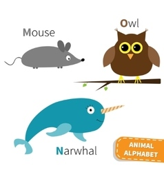 Letter m n o mouse narwhal owl zoo alphabet vector