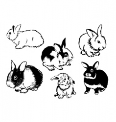 rabbits graphic vector image vector image