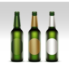 Set of bottles light beer with labels isolated vector