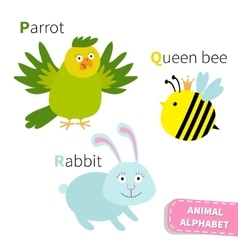 Letter p q r parrot queen bee rabbit zoo alphabet vector