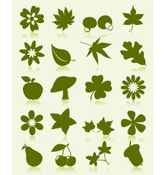 Flower leaves fruits icons vector