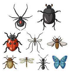 Insects set icons in cartoon style big collection vector