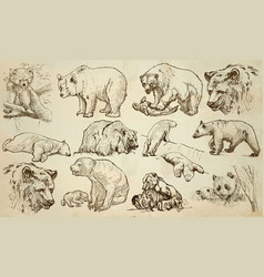 bears - an hand drawn pack line art vector image