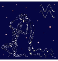 Zodiac sign aquarius on the starry sky vector