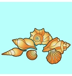 sea shells Hand paint starfish scallop vector image
