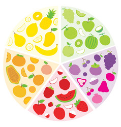 fruit circle vector image vector image