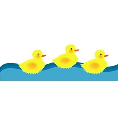 swiming ducky vector image vector image