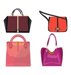 Women leather color handbags isolated on white vector