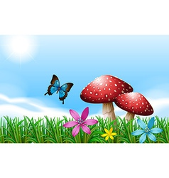 A butterfly near the red mushrooms vector