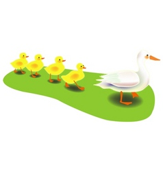 mother duck vector image