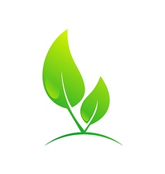 Green leaf nature bio ecology plant logo vector