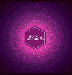 Elegant background with mandala design vector