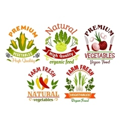 Fresh farm vegetables and herbs cartoon symbols vector