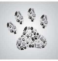 various animal footprints eps10 vector image