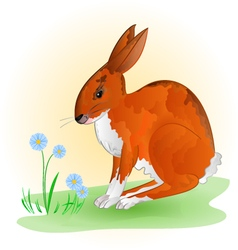 Cheerful spring bunny hare with blue flowers vector