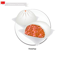 Dumpling chinese steamed bun and marinated pork vector