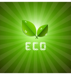 Green Ecology Background With Leaves And ECO Title vector image vector image