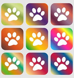 Paw icon sign nine buttons with bright gradients vector