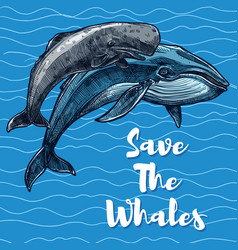 poster for whales saving vector image vector image