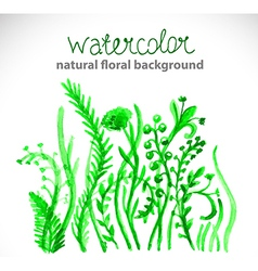 Watercolor beautiful green background vector image