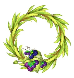 The violet berries at the bottom of a leafy round vector