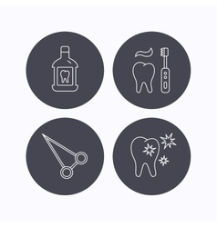 Mouthwash healthy teeth and peans forceps icons vector