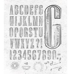 Vintage font letters vector image