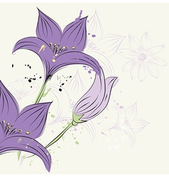 Floral and decorative design elements vector image
