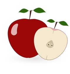 Red apple - vector image vector image
