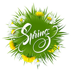 inscription hello spring on background with spring vector image vector image