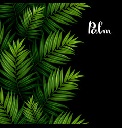 Tropical palm leaves seamless pattern border on vector