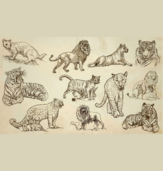 cats - an hand drawn pack line art vector image