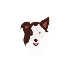 border collie brown head vector image vector image