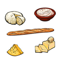 Sketch dairy products and baguette set vector