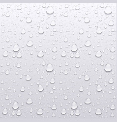 Water drops on glass rain drops on clear window vector