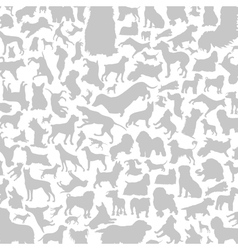 Dog a background vector