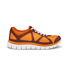 Realistic bright sport shoes for running vector