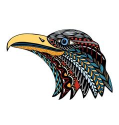 Color eagle head vector