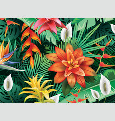 background with from tropical flowers vector image