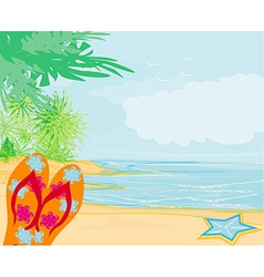 Flip-flops and seashell on the beach vector image