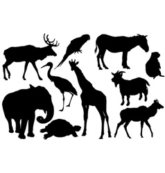 Set of animal silhouettes vector