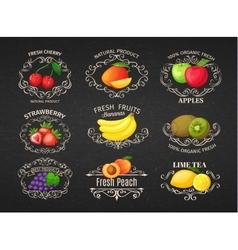 Set vintage label with fruits vector image