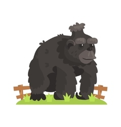 Large black gorilla wih scruffy fur standing on vector