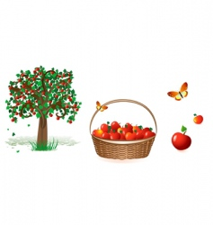 tree and apples vector image