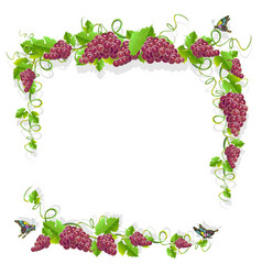 Vintage frame with grape vector