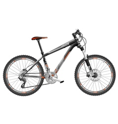 Bicycle hardtail vector