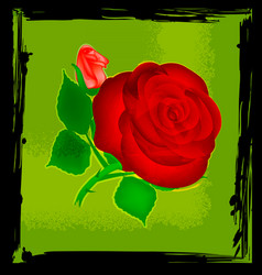 abstract green and red rose vector image vector image