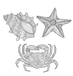Set of marine objects vector